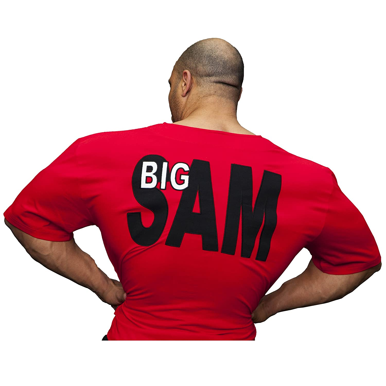 BIG SAM SPORTSWEAR COMPANY Bodybuilding Mens Ragtop Rag Top Sweater Gym T-Shirt 3192