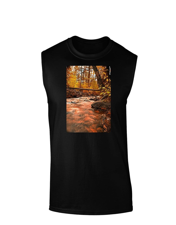 TooLoud Mt Shavano Colorado Dark Muscle Shirt
