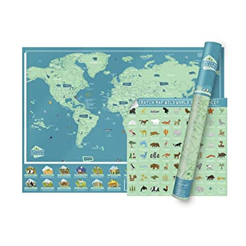 Amazon luckies of london animal world map with facts about luckies of london animal world map with facts about wildlife gumiabroncs Gallery