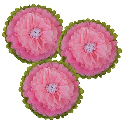 Amazon just artifacts tissue paper flower pom poms 14inch set just artifacts tissue paper flower pom poms 14inch set of 3 color mightylinksfo