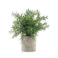Velener Mini Potted Plastic Fake Green Plant for Home Decor (Bamboo Leaves)