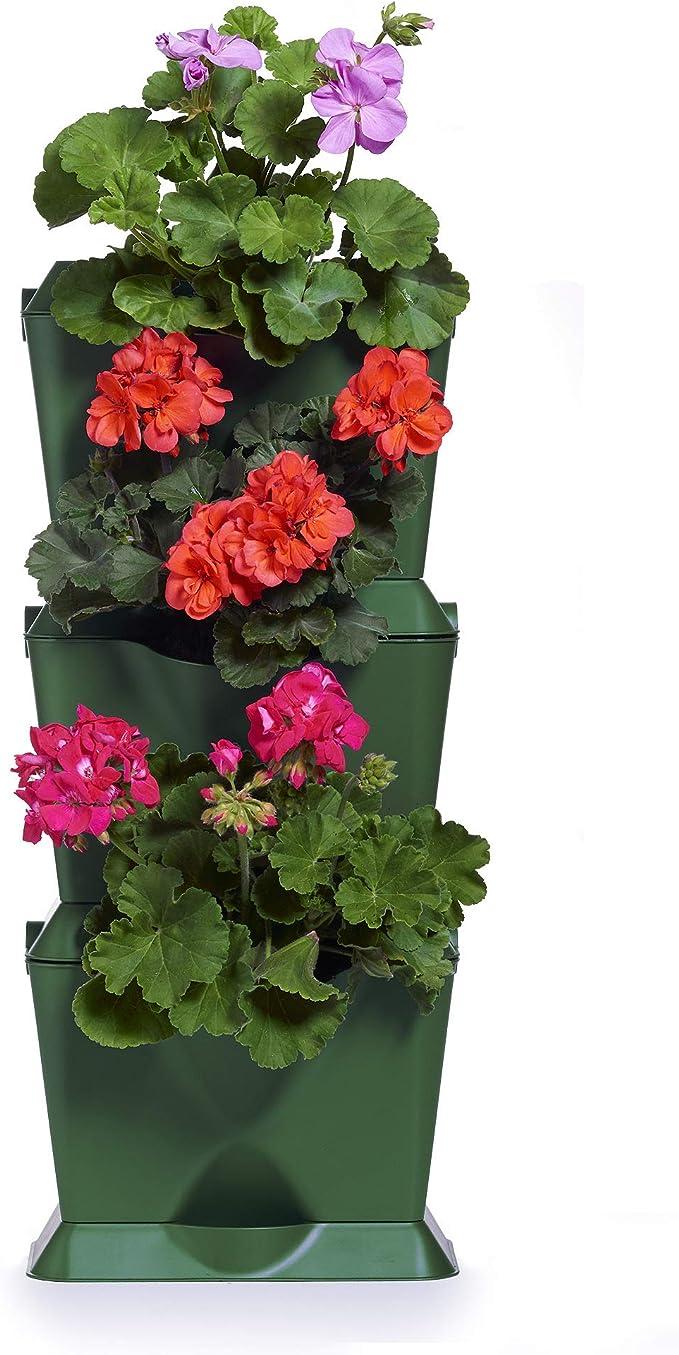 minigarden 1 Juego One para 3 Plantas, Jardín Vertical Modular y Extensible, Colocar en el Suelo o Colgar en la Pared, Mecanismo de Drenaje Innovador, Largo Ciclo de Vida (Verde): Amazon.es: Jardín