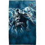 "Stormy Knight -- Batman -- Beach Towel (36"" x 58"")"