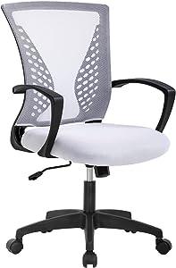 Ergonomic Office Chair Desk Computer Mesh Executive Task Rolling Gaming Swivel Modern Adjustable with Mid Back Lumbar Support Armrest for Home Women Men,White