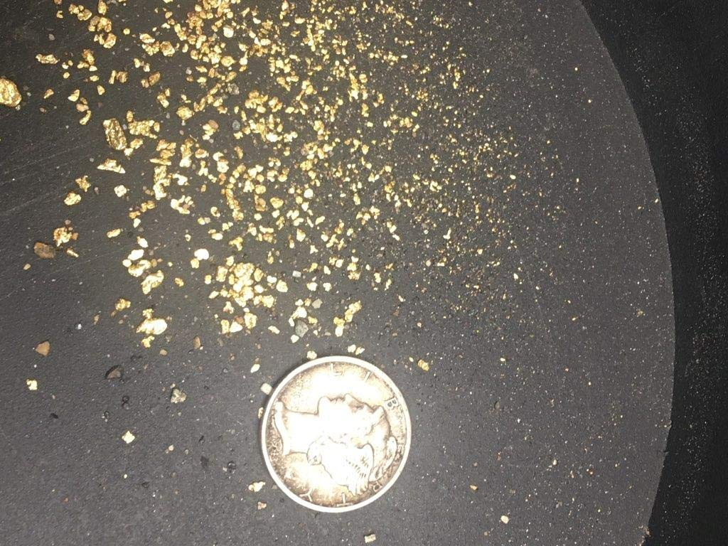 Gold Paydirt 10 LB from Colorado - Unsearched Bags - Pan at Home - Guaranteed Gold by Gold Paydirt