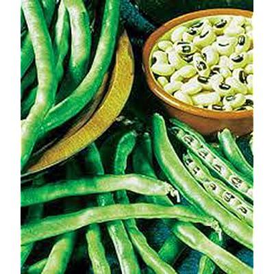 Peas, California Black Eye, Heirloom, Organic 20 Seeds, a Simply Delicious Pea: Grocery & Gourmet Food