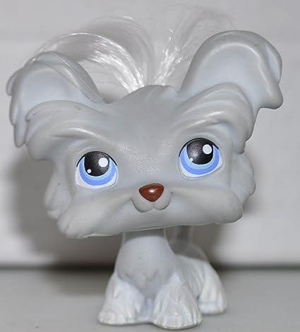 Amazoncom Shih Tzu 227 White Hair Littlest Pet Shop Retired