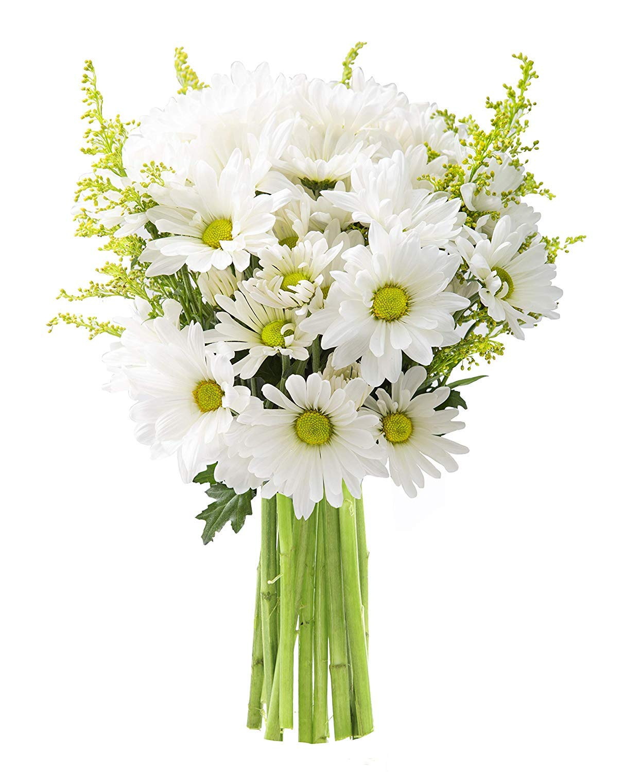 KaBloom Bountiful Beauty Bouquet of Fresh White Daisies by KaBloom (Image #2)