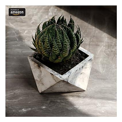 Buy Paradox Origami Cement Planter/Vase / Flower Pot/Home Decor ...