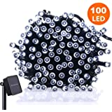 Frostfire Moonzazzle - 100 LED Solar Fairy String Lights