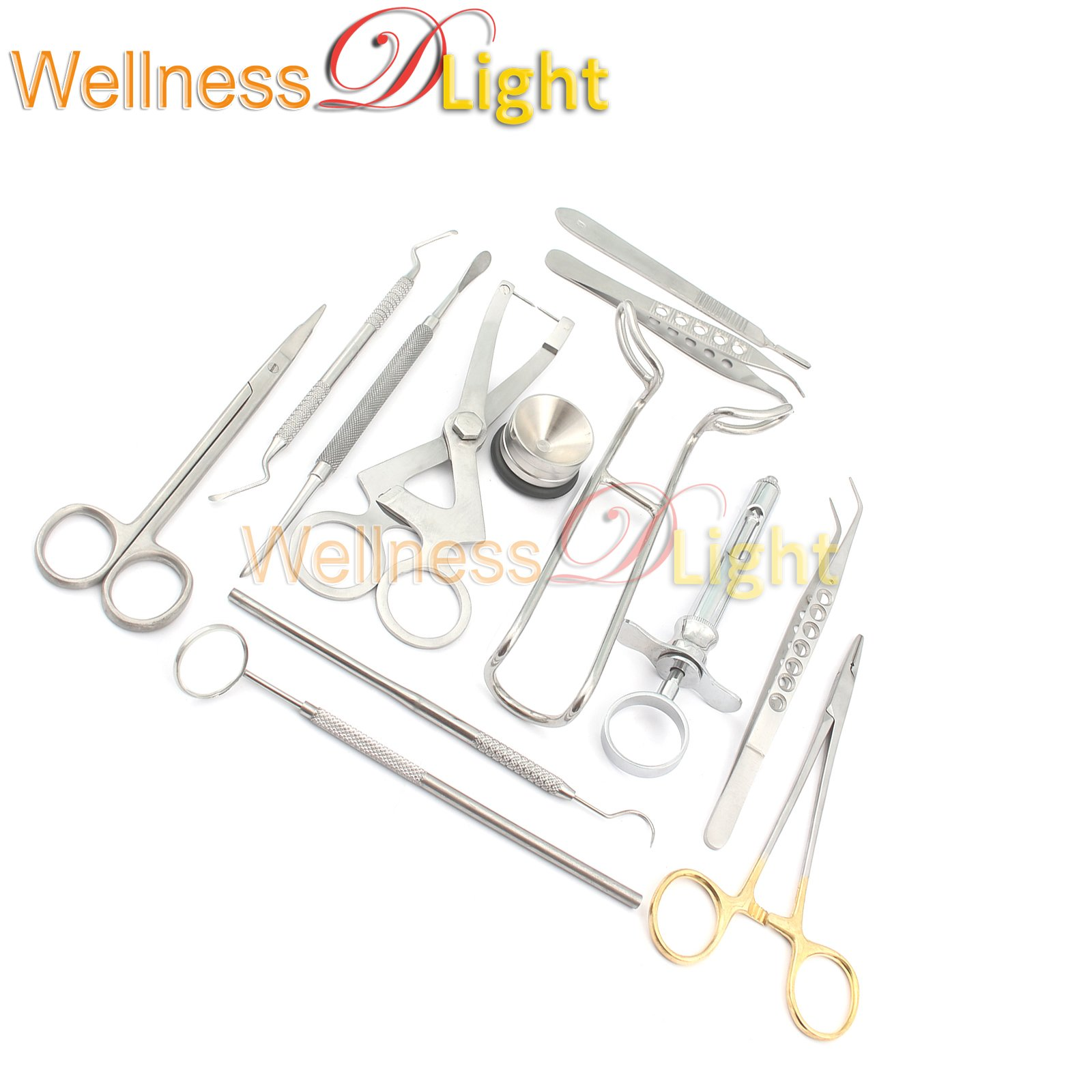 WDL PERIODONTAL PROSTHETIC KIT