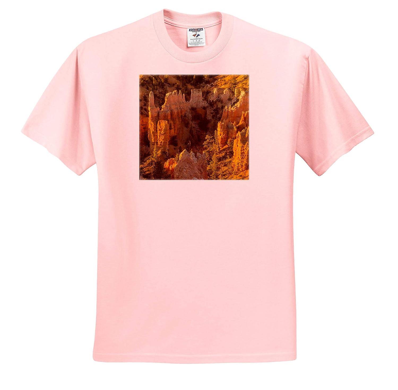 Utah - Adult T-Shirt XL USA ts/_315072 Bryce Canyon National Park Canyon Overview 3dRose Danita Delimont Utah