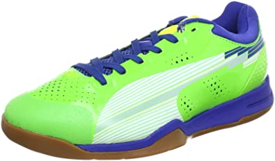 Puma evoSPEED Indoor 1, Chaussures de handball mixte adulte Vert Grün (jasmine