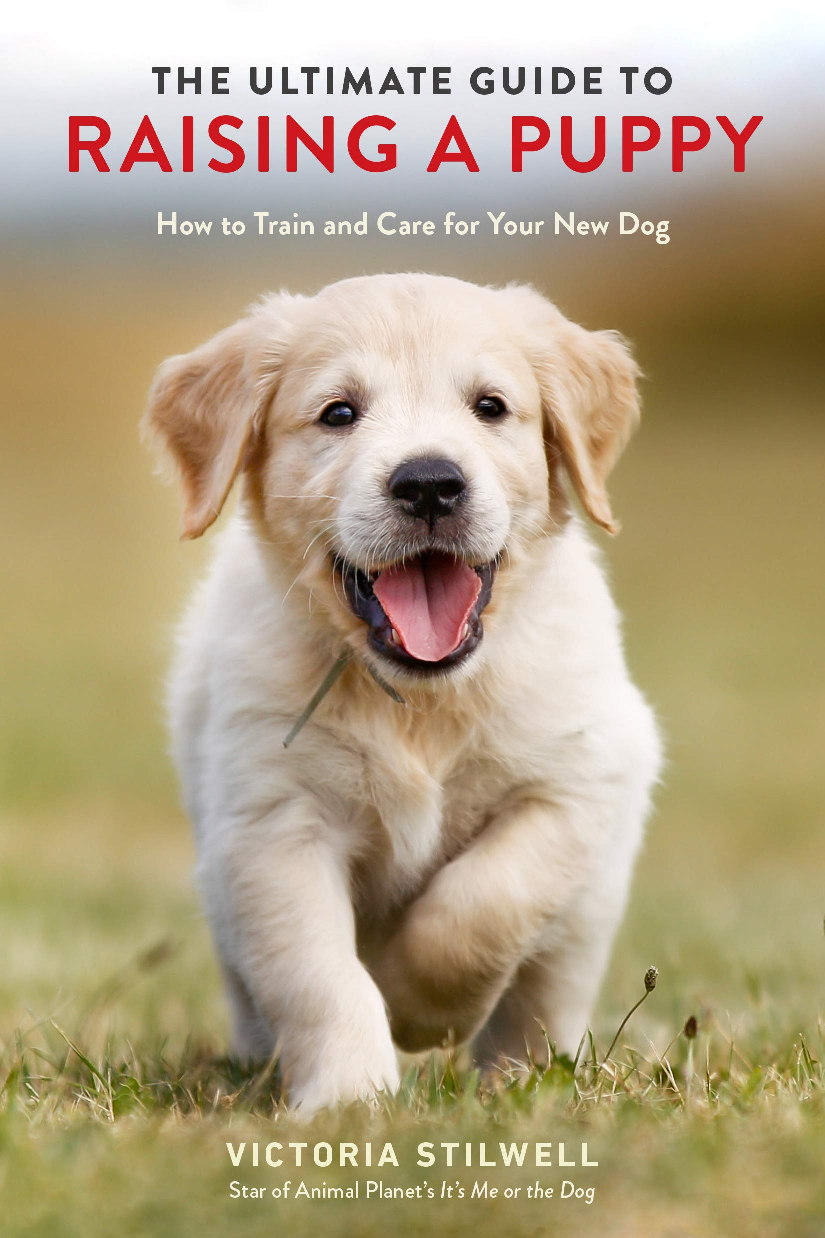 The Ultimate Guide to Raising a Puppy: How to Train and Care for Your New Dog by Ten Speed Press