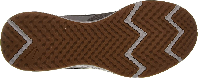 Nike Heren Revolutie 5 Track & Field Schoenen Smoke Grey Dk Smoke Grey Photon Dust Mtlc Copper Gum Med Brown