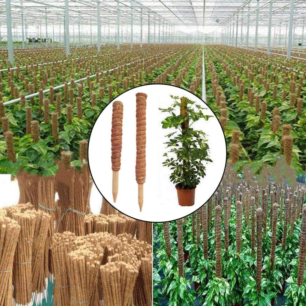 T/ótem de Coco Plantas trepadoras de Fibra de Coco Palo T/ótem de Coco al Aire Libre Enredadera Trelli Frame