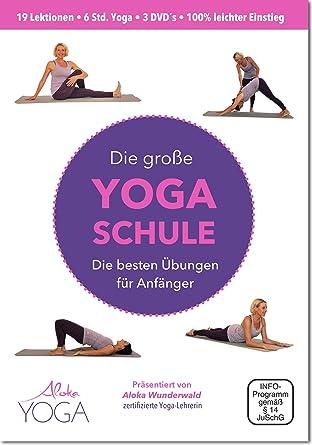 Die Große Yoga Schule DVD: Die besten Übungen für Anfänger 3 DVDs NEU | Yoga dvd für Anfänger - Mehr Entspannung, Beweglichke