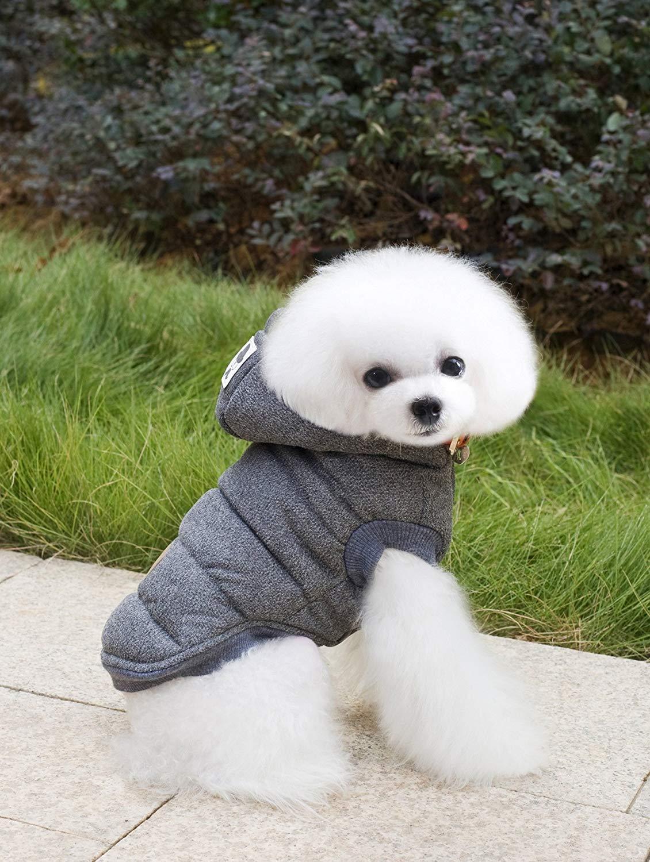 Grey XXL Grey XXL HSDDA Party Pet Costume Pet clothing dog clothes autumn and winter mustache two-legged cotton coat (color   Grey, Size   XXL) Pet Uniform (color   Grey, Size   XXL)