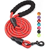 BAAPET 5 FT Strong Dog Leash with Comfortable Padded Handle and Highly Reflective Threads for Medium and Large Dogs