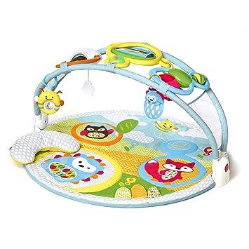 a0e5fc745dd5 Amazon.com   Skip Hop Explore   More Amazing Arch Baby Play Mat ...