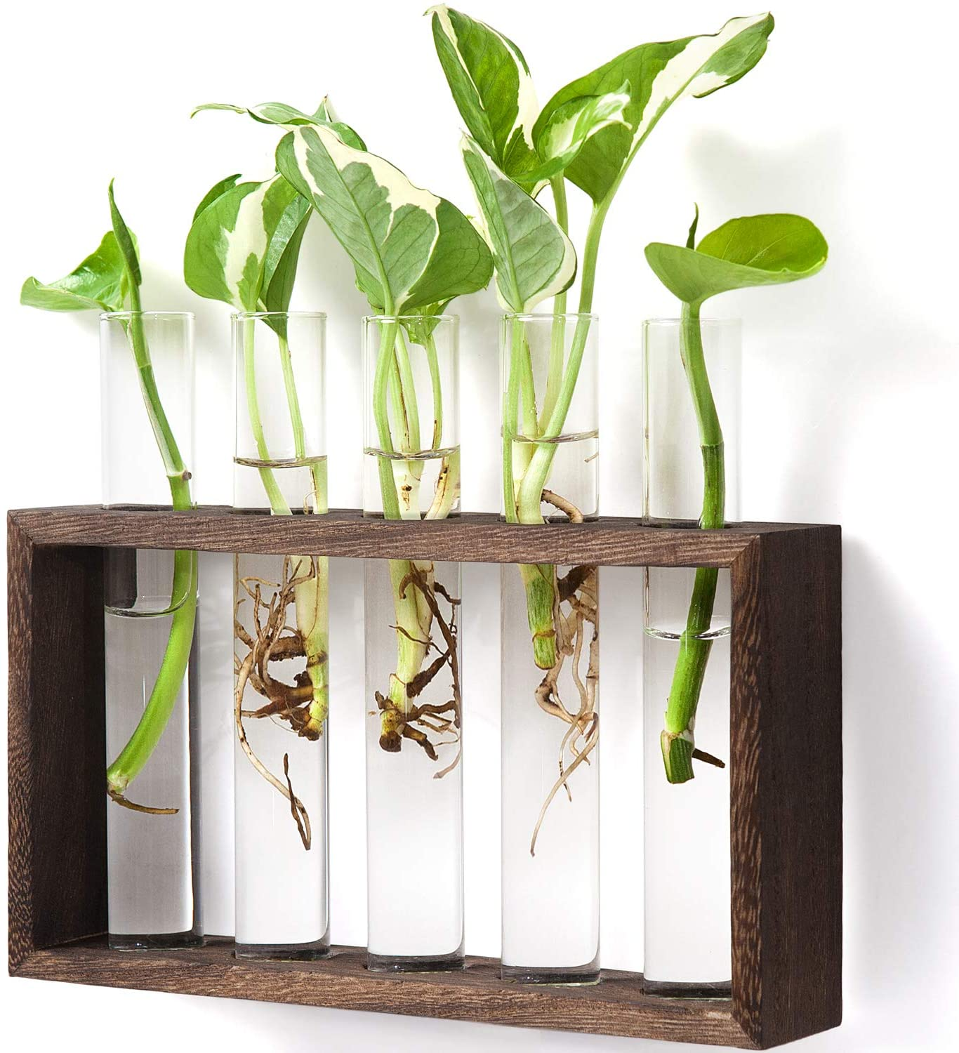 Mkono Wall Hanging Glass Planter Propagation Station Modern Flower Bud Vase in Wood Stand Rack Tabletop Terrarium for Hydroponics Plants, Home Office Decoration with 5 Test Tube, Medium, Brown