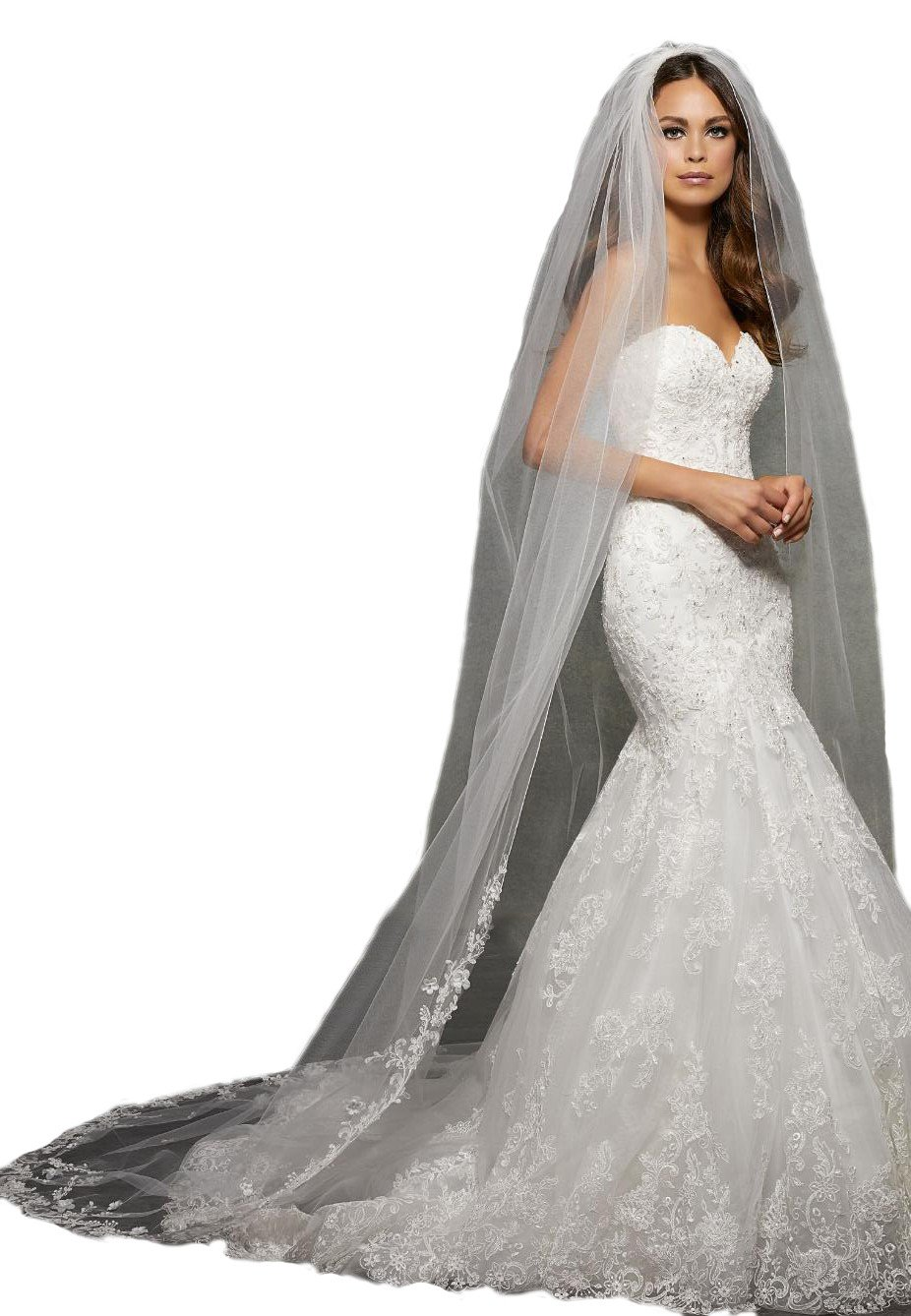 Passat Pale Ivory Single-Tier 3M Cathedral Wedding Bridal Veil with Lace and Floral Design Lightly Beaded with Rhinestones VL1054