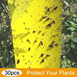 Best Trap 30-Pack Dual-Sided Yellow Sticky Traps for Flying Plant Insect Such as Fungus Gnats, Aphids, Whiteflies, Leafminers - (9.8 x 4 Inches, Twist Ties Included)