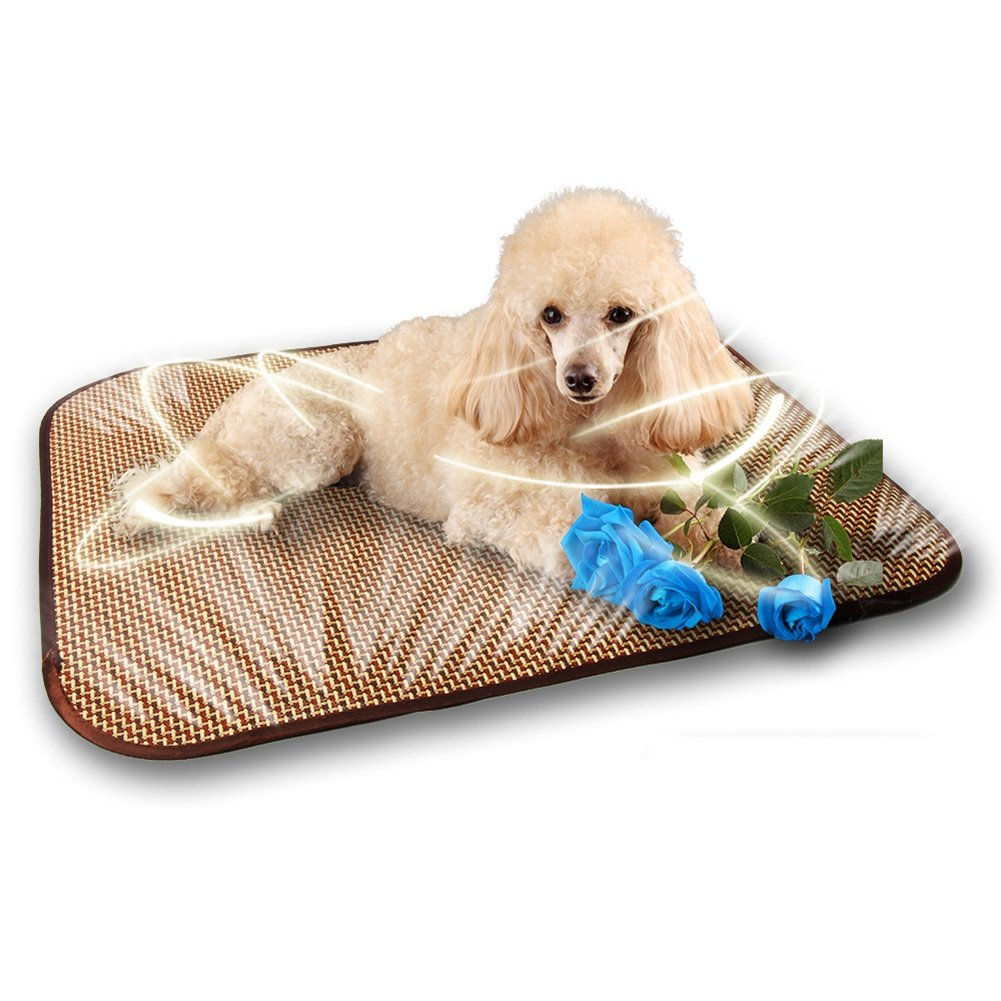 3030cm Pet Cool mat Summer Pet Pad Dogs Mat Bed Cats Sleeping Mat Mattress Kennel Cool Pad Pet Supplies Ice Pad Breathable Big Small and Medium Dogs Rattan Seats pet Cool pad (Size   3030cm)