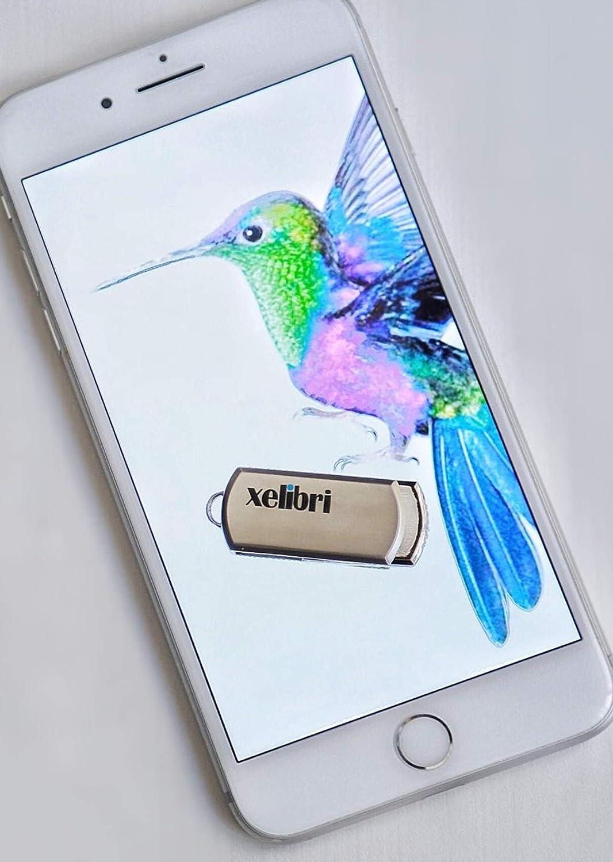 Xelibri Memories Dual USB-C und USB 3.0 64 GB Flash-Laufwerk Gold