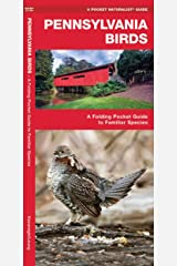 Pennsylvania Birds: A Folding Pocket Guide to Familiar Species (Wildlife and Nature Identification) Pamphlet