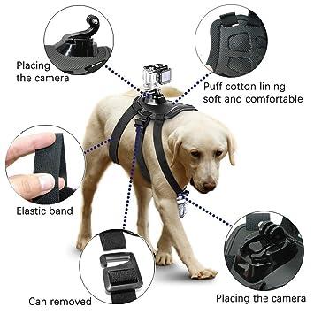 Firststore GoPro Montar el arnés del perro - GoPro Fetch para la sesión 4 del héroe