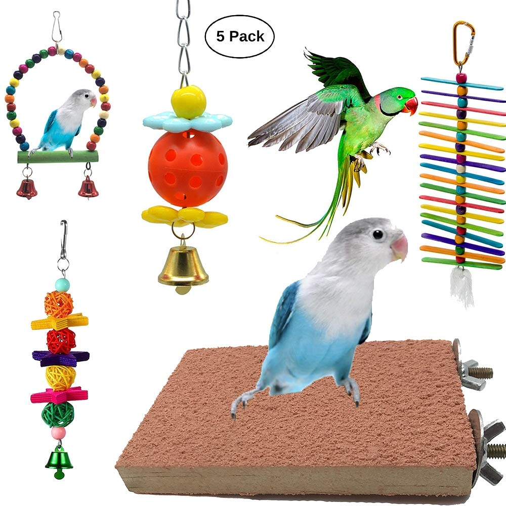 5 Pieces of Long-Tailed Parred Bird Toy Frosted Board Swing Toy Climbing Cage Hanging Toy with Bell Parred Long-Tailed Parred Parred Macaw Parred