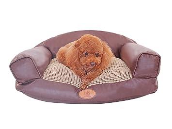 Amazon.com: PLS Canto Paradise perro de peluche sofá, cojín ...