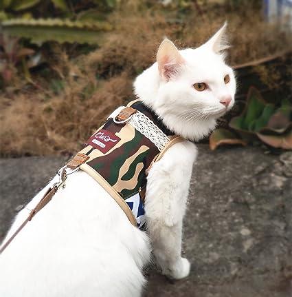 Amazon.com : Kitten / Ferret Walking Jackets Padded Vest Cat Harness