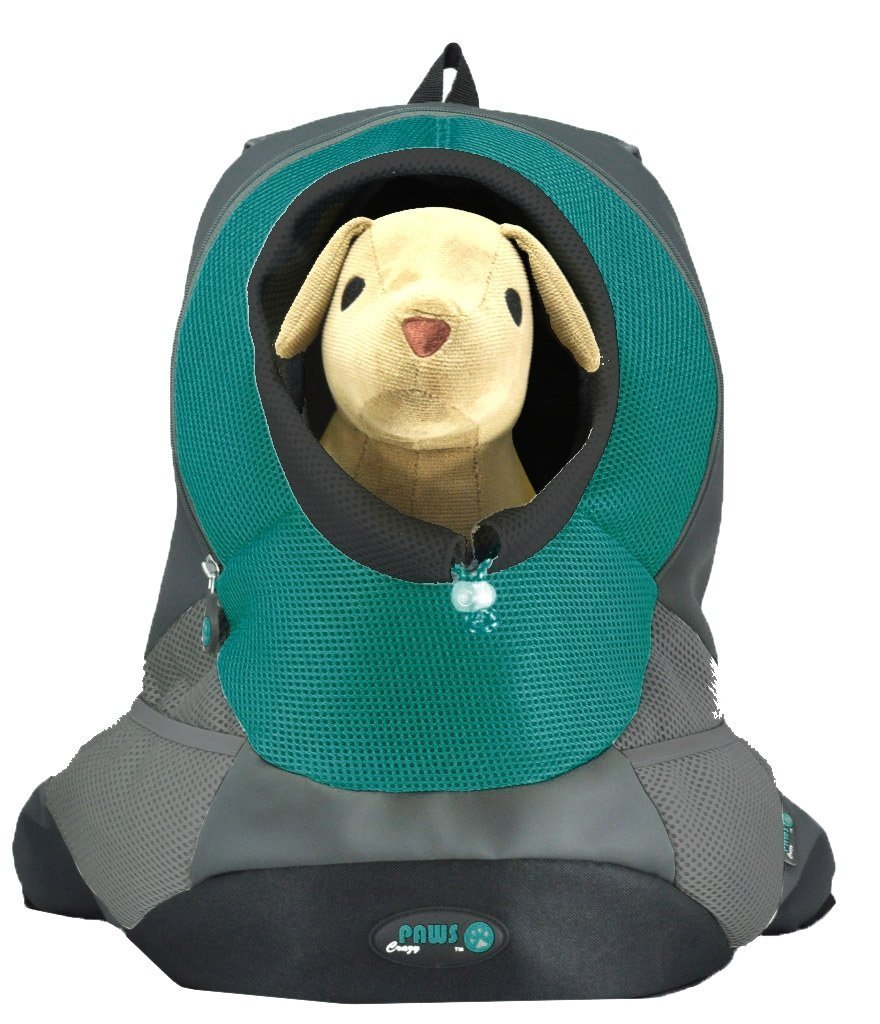 Crazy Paws  Pet Backpack Large Seabreeze