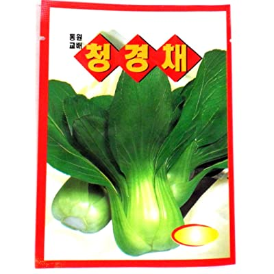 Bokchoy Seeds Korean 1pack : Vegetable Plants : Garden & Outdoor