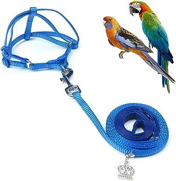 Alfie Pet - Juego de arnés y Correa de Nailon Kyoto para pájaro ...