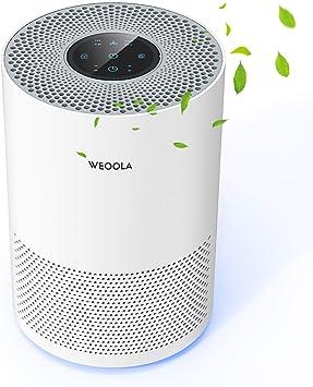 HOBFU Luftreiniger,Geruchsbeseitiger HEPA-Filter,mit Ruhe und Timer Funktion DE