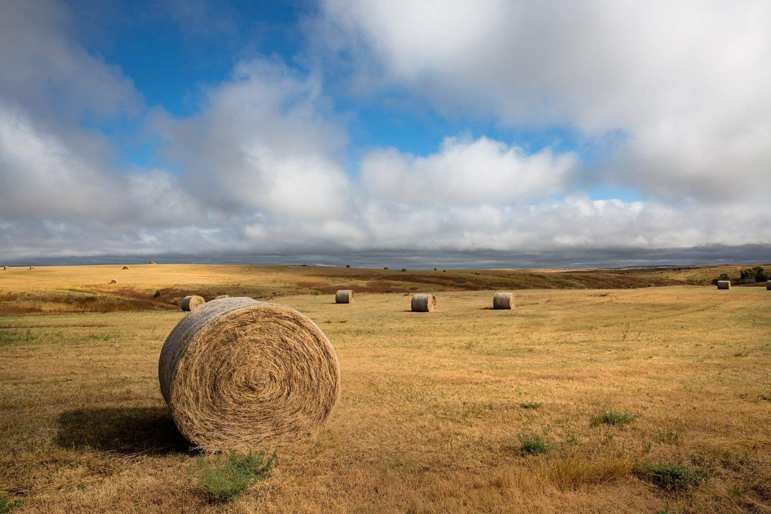 South Dakota Photography Art Print - Picture of Hay Bales Under Clearing Sky Farming Home Decor 5x7 to 30x45