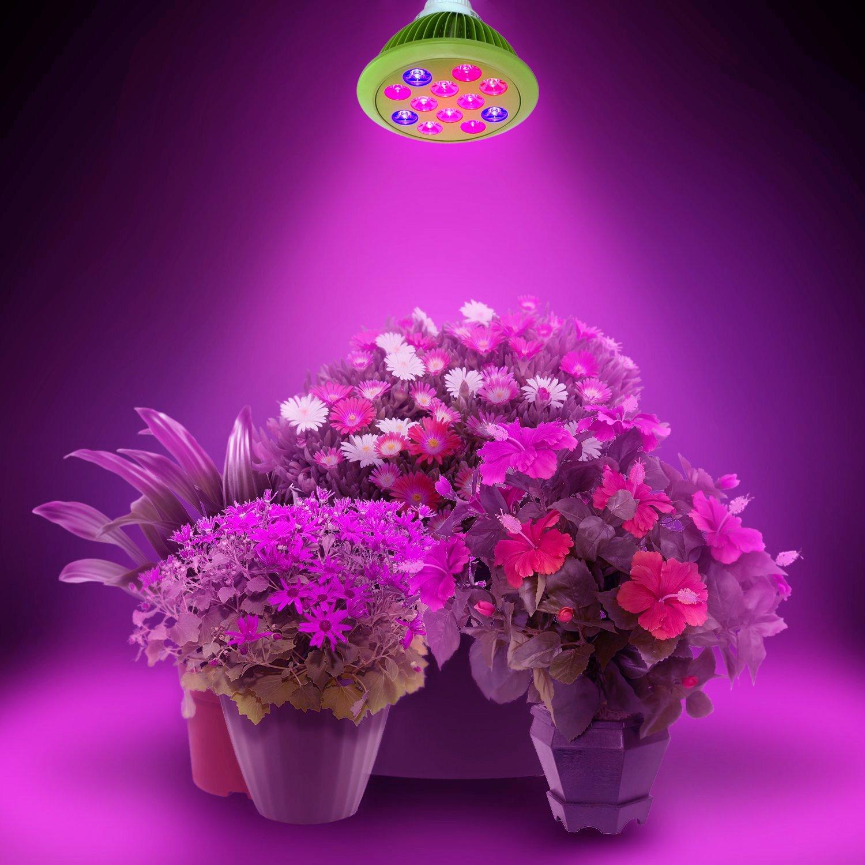 Led Eclairage Pour Plantes 36w De Croissance Led E27 Ampoules