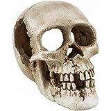 Niteangel Primate Skull Habitat Decor Hideout Place for Fish Aquarium