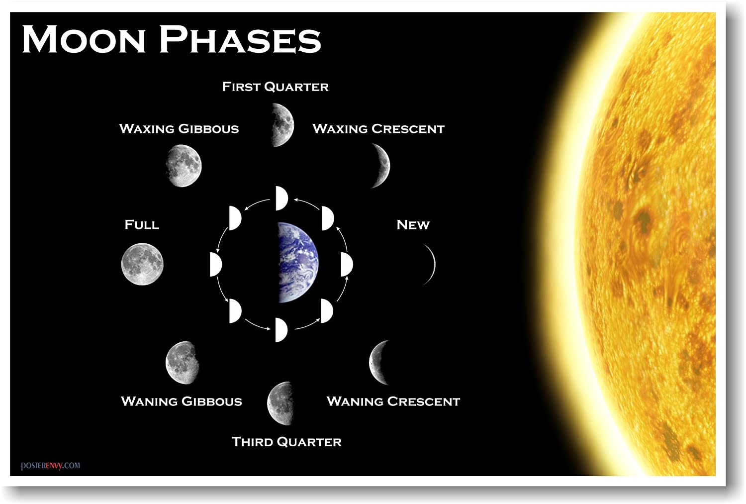 Moon Phases Classroom Science Poster Prints Posters Phase Diagram 3 Lunar