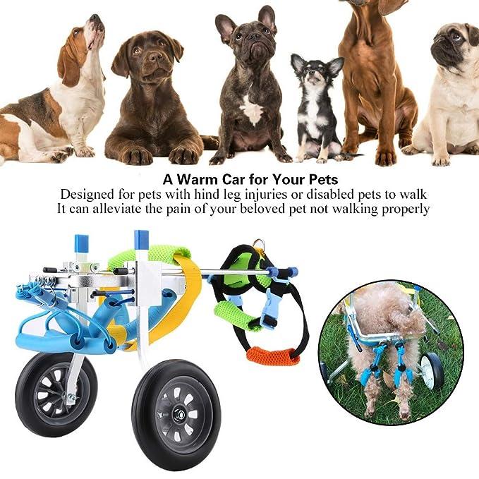 Silla de Ruedas para Perros, Perro Ajustable Silla de Ruedas para discapacitados Perro asistido Caminata Trasera Ejercicio para Las piernas Ejercicio para ...