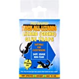 Stick All Lizards Lizard Glue Trap, 1ct