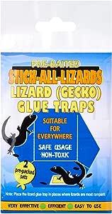 Stick All Lizards Lizard Glue Trap, 1ct