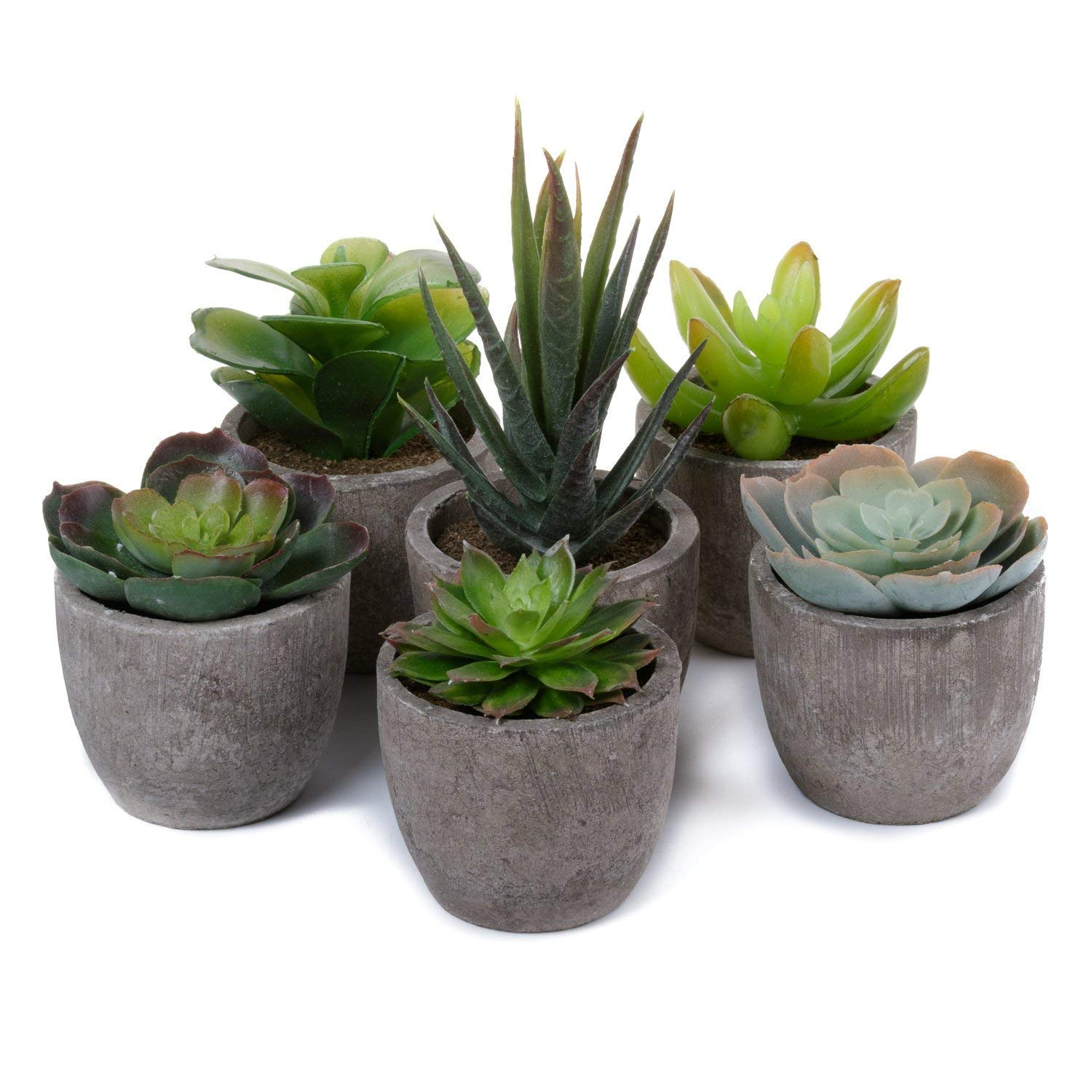 Artificial Succulent Plants Series Plastic Decorative Grass Collection 1 of T4U, Pack of 6