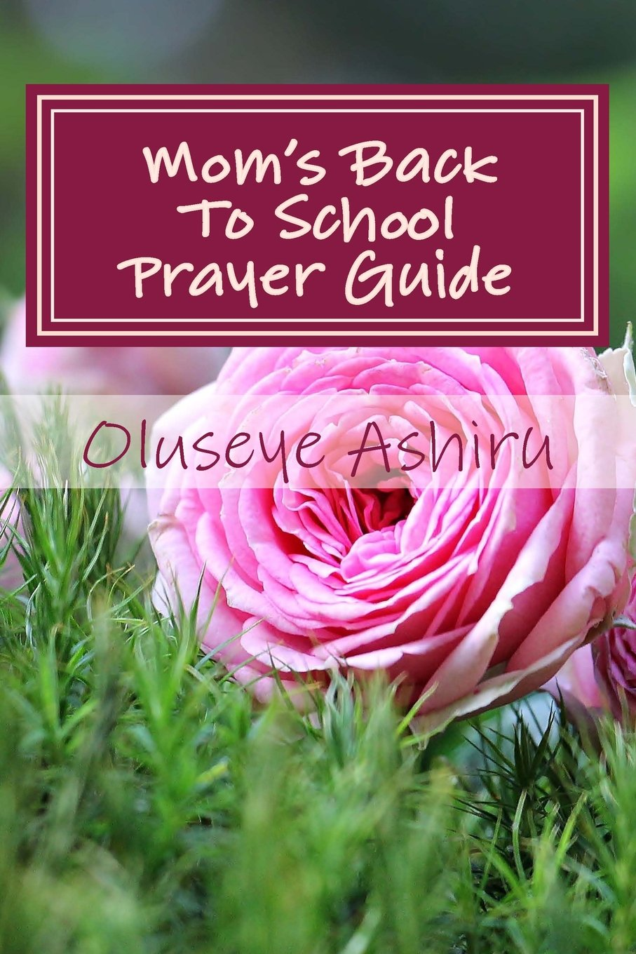 Download Mom's Back To School Prayer Guide: A Resource for Praying, Journaling & Planning for The School Year ebook
