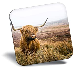 Destination Vinyl ltd Awesome Fridge Magnet - Fluffy Brown Highland Cow Scotland 15755