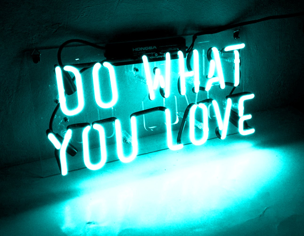 Neon Beer Signs for Bars Glass Lamp Wall Art Light Fixture Decorations for Girls Home Bedroom Office Garage Holiday Wedding Party Hawkweed Do What You Love