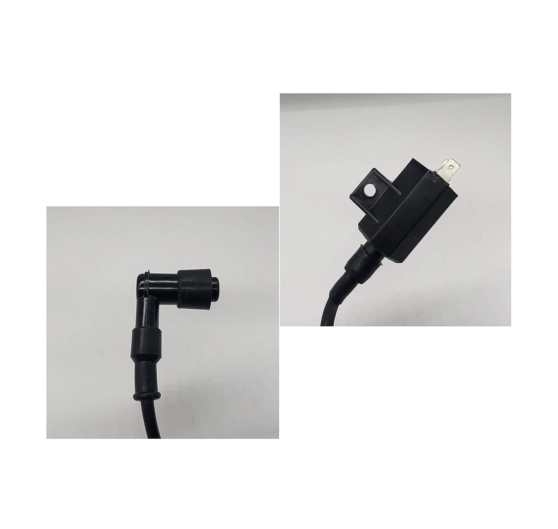 SHUmandala 21121-1229 21121-1160 21121-1198 Ignition Coil fit Kawasaki Bayou KLF400 KLF220 KLF250 1988-2011//Prairie KVF300 KVF360 KVF400 1997-2012// Eliminator 125 BN125 2001-2009